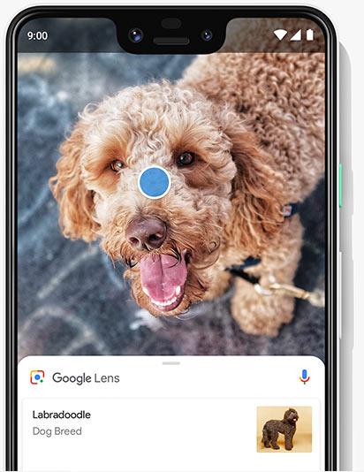 Google Pixel 3 XL | Bell Mobility | Bell Canada