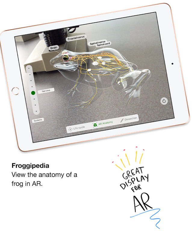Froggipedia. View the anatomy of a frog in AR. Great display for AR.