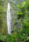 Zen Moment - Waterfalls Maui