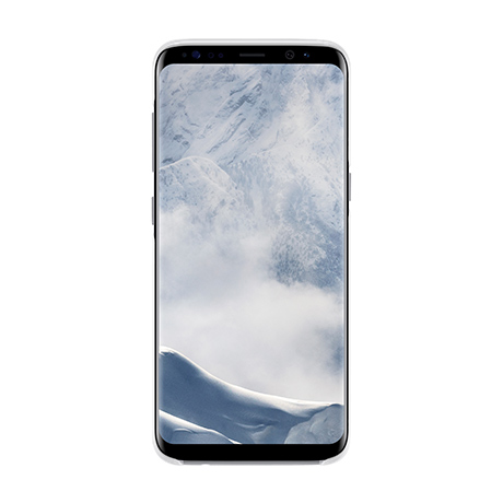 Samsung Clear Cover (silver) for Samsung Galaxy S8